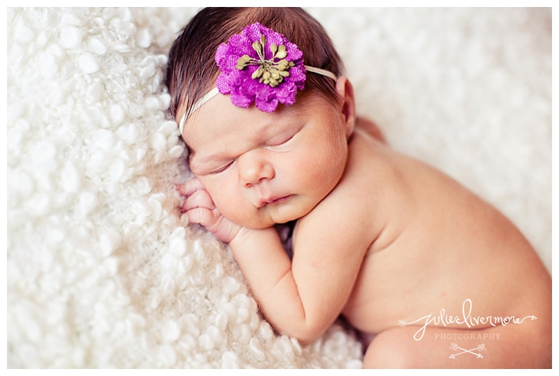 ft collins newborn photographer