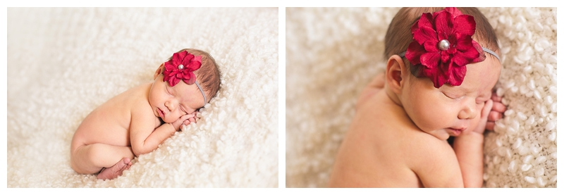 fort collins newborn photography