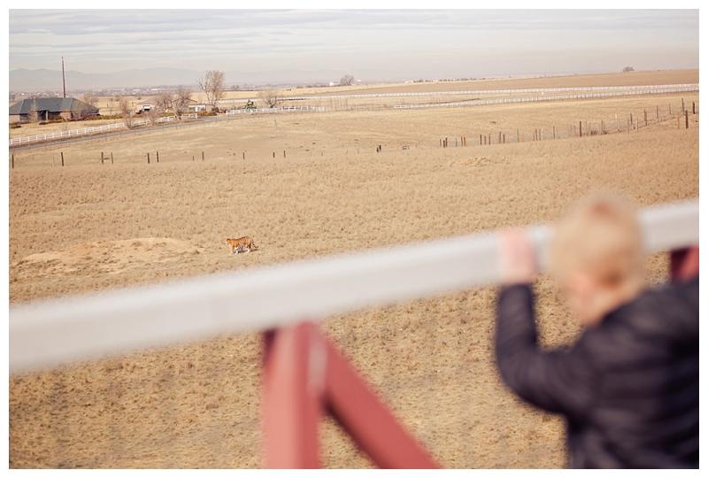 Denver Photographer
