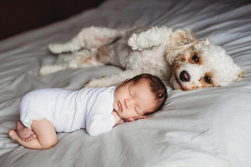 Lifestyle Newborn   www.julielivermorephotography.com